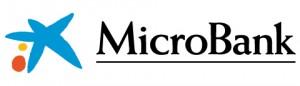 MicroBank_logo_Pantone_horizontal72